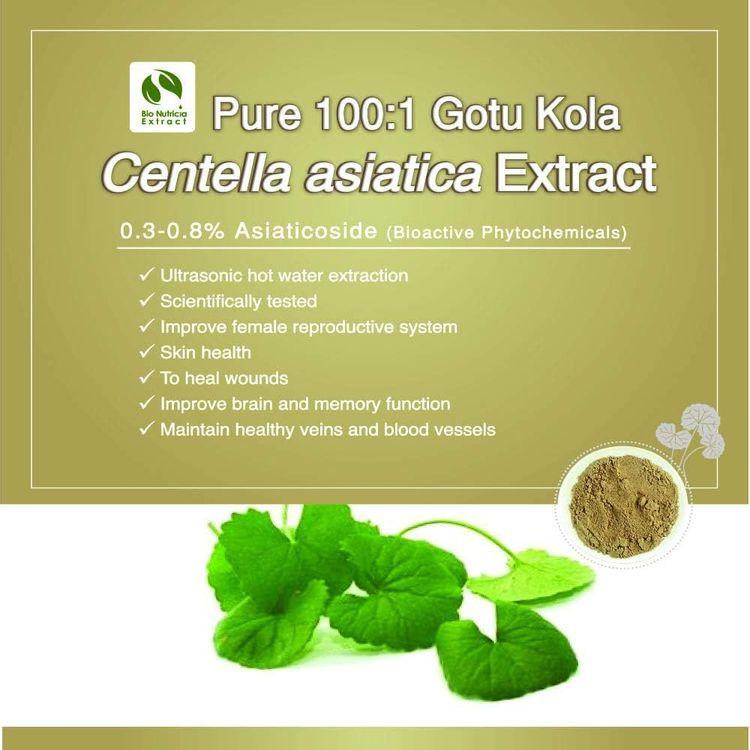 Natural Pegaga Centella Asiatica 0.3%-0.8% Asiaticoside Extract Powder Pure 100:1 Gotu Kola 100g (100 Gram)