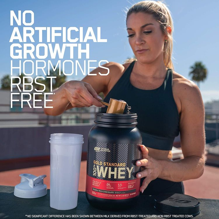 Optimum Nutrition Gold Standard 100% Whey Protein Powder, Double Rich Chocolate 1 Pound (Packaging May Vary)