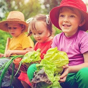 healthy kids vitamin code