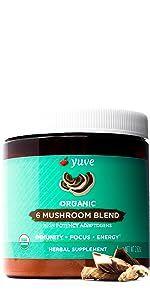 mushroom powder extract