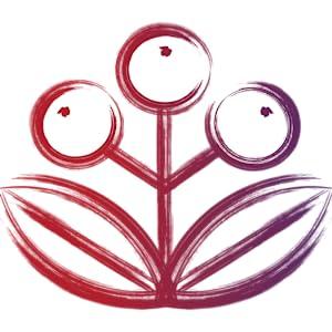 Zhou Elder-Mune Sambucus Elderberry Gummies Antioxidant Flavonoids Immune Support Zinc Vitamin C