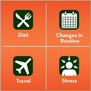 Diet, changes in routine, travel, stress