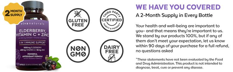 viva naturals elderberry vitamin c zinc non gmo dairy free gluten free healthy support immunity labs