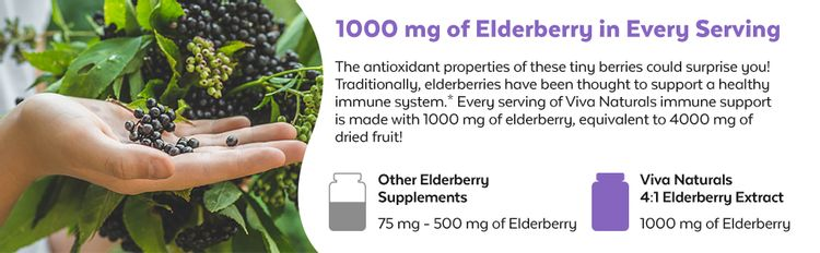 viva naturals elderberry immune health support supplement elderberries healthy immunity support