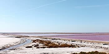 trace minerals, electrolytes, salt, magnesium, concentrace, great salt lake